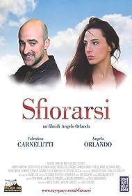 Sfiorarsi (2006)