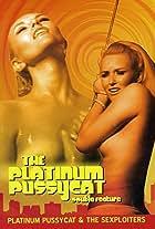 Platinum Pussycat