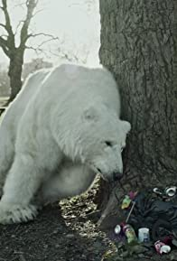 Primary photo for The Homeless Polar Bear