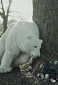 Primary photo for The Homeless Polar Bear
