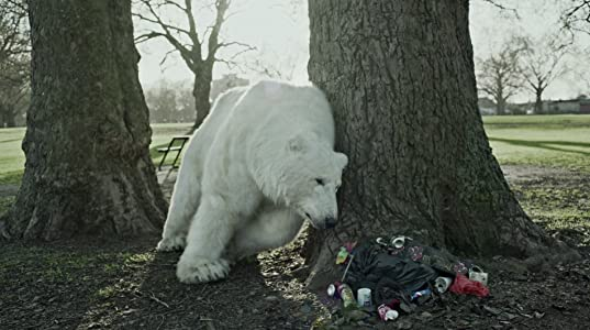 Movie downloads ipod The Homeless Polar Bear [480x640]