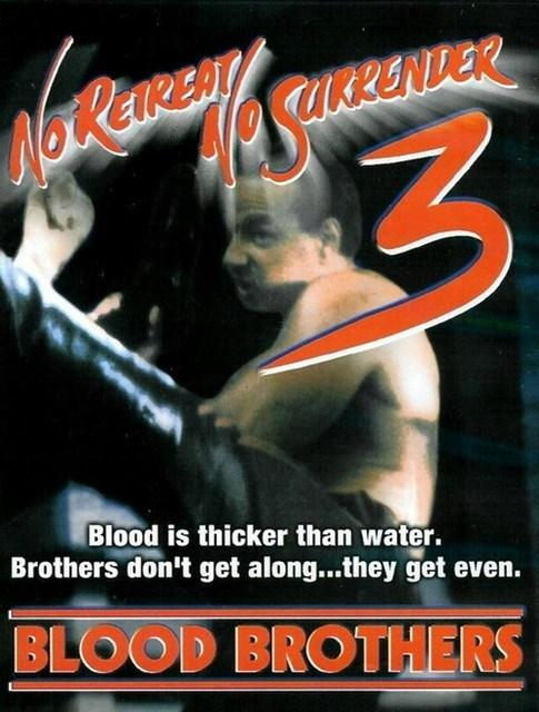 Os Irmãos Kickboxers [Dub] – IMDB 5.3