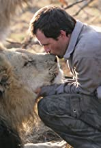 The Lion Ranger