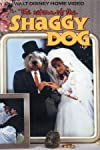 The Magical World of Disney: The Return of the Shaggy Dog (1987)