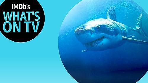 Shark Week Baits Viewers With Josh Duhamel
