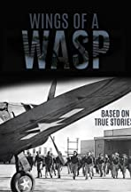 Wing's of the Wasp