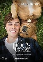 為了與你相遇,A Dog's Purpose