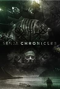 Primary photo for Senja Chronicles