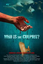 Chronicles of Religious Persecution: Christian Movie - Who Is the Culprit?