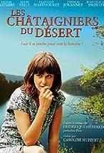 Primary image for Les châtaigniers du désert