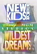 New Kids on the Block at Disney-MGM Studios: Wildest Dreams