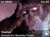Beautiful people imdb