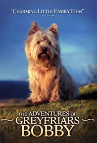 Primary photo for The Adventures of Greyfriars Bobby
