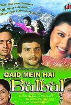 Qaid Mein Hai Bulbul