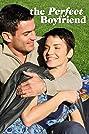 The Perfect Boyfriend (2013) Poster