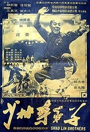 Shao Lin Si di zi Poster