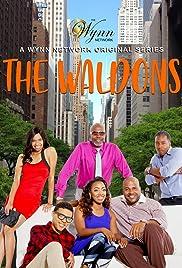 John Wynn's Waldons: Pilot Poster