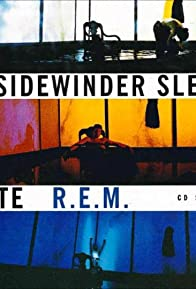 Primary photo for R.E.M.: The Sidewinder Sleeps Tonite