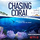Chasing Coral (2017)