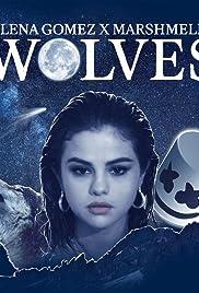 Selena Gomez & Marshmello: Wolves Poster