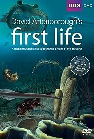 First Life (2010) Poster - TV Show Forum, Cast, Reviews
