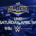 WWE Hall of Fame (2014)