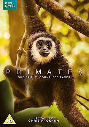 Where to stream Primates