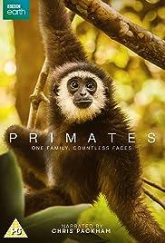 Primates Poster