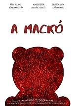 A mackó