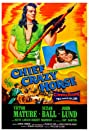 Chief Crazy Horse (1955) Poster