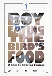 Boy Eating the Bird's Food Poster