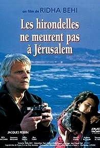 Primary photo for Les hirondelles ne meurent pas à Jerusalem