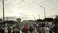 The Road To Asylum/Lab Rat Nation