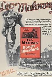 Border Blackbirds Poster