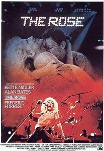 Divx download downloads free movie movie The Rose USA [720x576]
