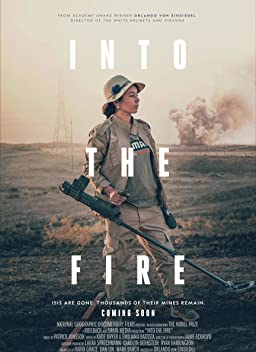Into the Fire (2019)