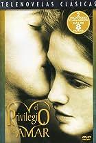 El privilegio de amar