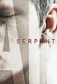 Serpentine Fire Poster