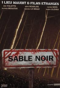 Primary photo for Sable noir