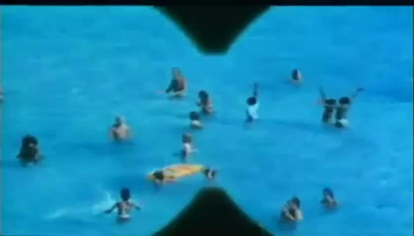 Jaws 2 1978 Imdb