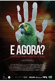 E Agora? O Tráfico de Animais Silvestres no Brasil