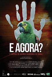 E Agora? O Tráfico de Animais Silvestres no Brasil Poster