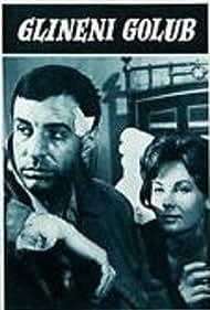 Zoran Radmilovic in Glineni golub (1966)