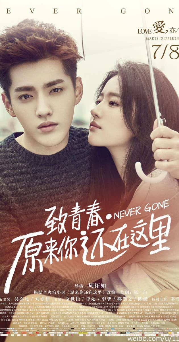 Subtitle of So Young 2: Never Gone