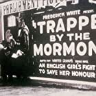 Trapped by the Mormons (1922)