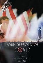 Four Seasons of Covid