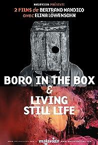 Primary photo for Boro in the Box