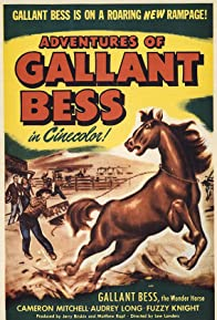 Primary photo for Adventures of Gallant Bess