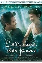 L'écume des jours (2013) Poster