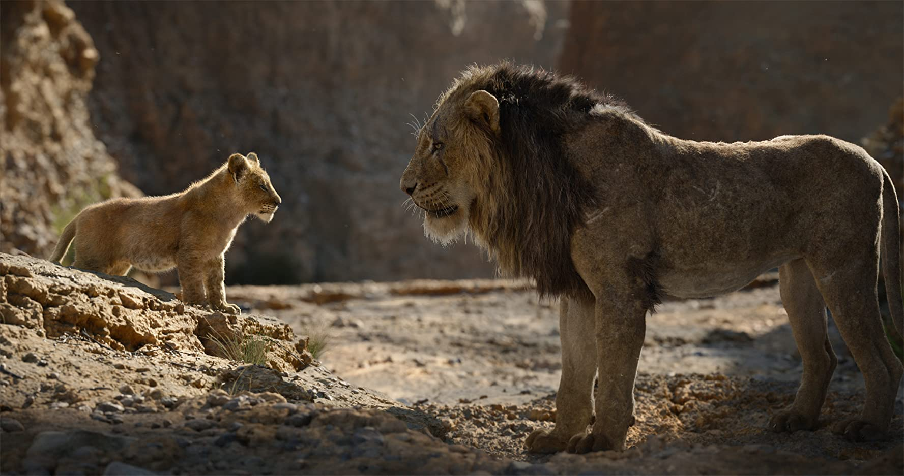 Chiwetel Ejiofor and JD McCrary in The Lion King (2019)
